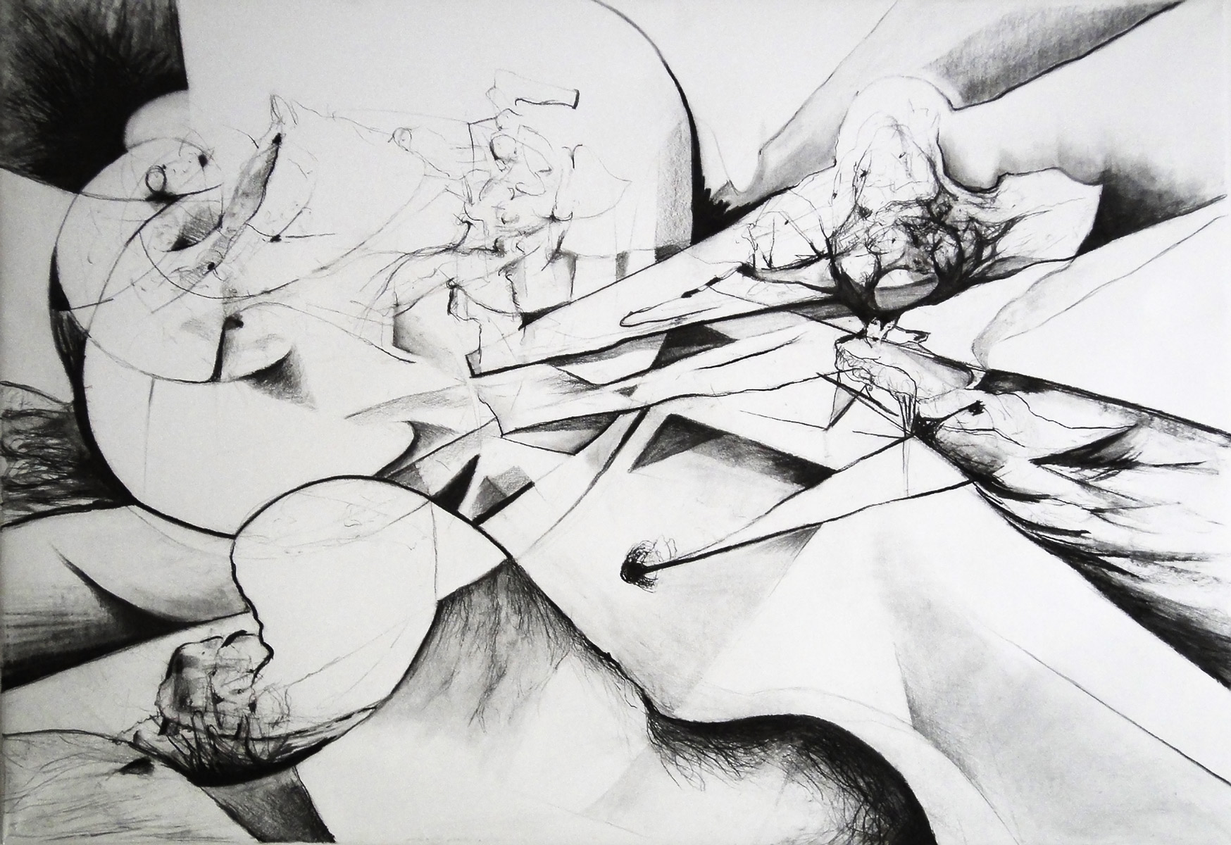 Charcoal on paper, 110x160cm, 2012